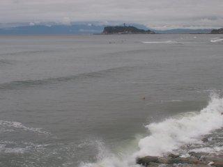2018/6/16 江の島がちょっぴり近い冷える週末、早朝に泳ぐ姿はとても寒そう