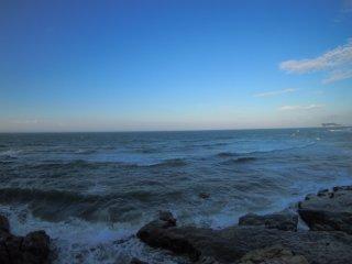2018/8/10 湿気た潮風蝉しぐれ、ぼんやりと晴れた浜辺は確かに夏そのものなのにどこかピンとこない朝。